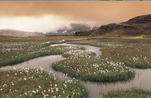 islande visite